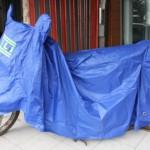 Cover Motor Bali